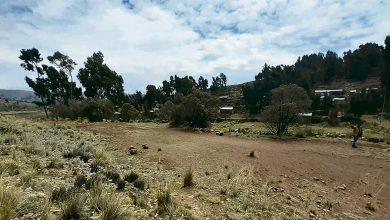 Photo of Puno: Cancha de fútbol no existe, gastaron S/ 200.000 solo hay  terreno en el distrito de Tilali